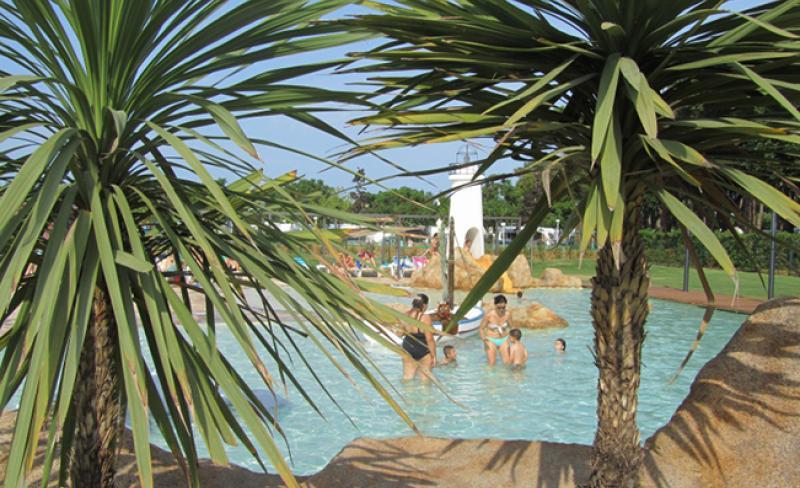 camping-valldaro-palmiers.jpg