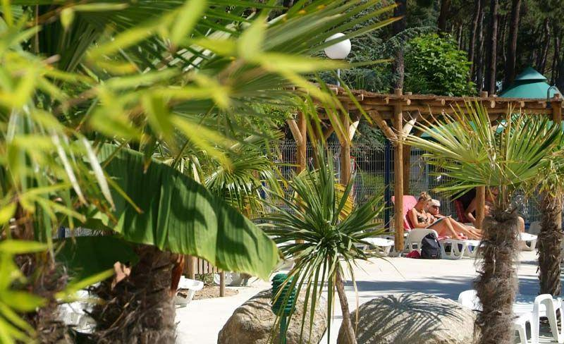 camping-vieux-port-messanges-landes-ambiance.jpg