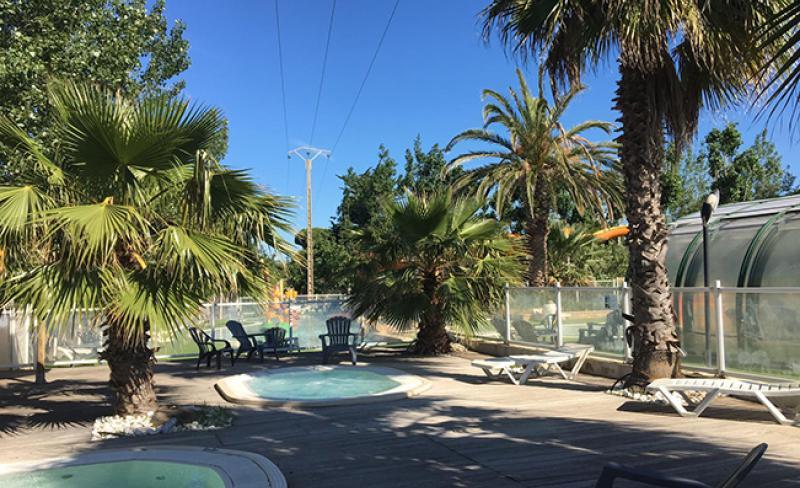 clos-virgile-piscine-palmiers.jpeg