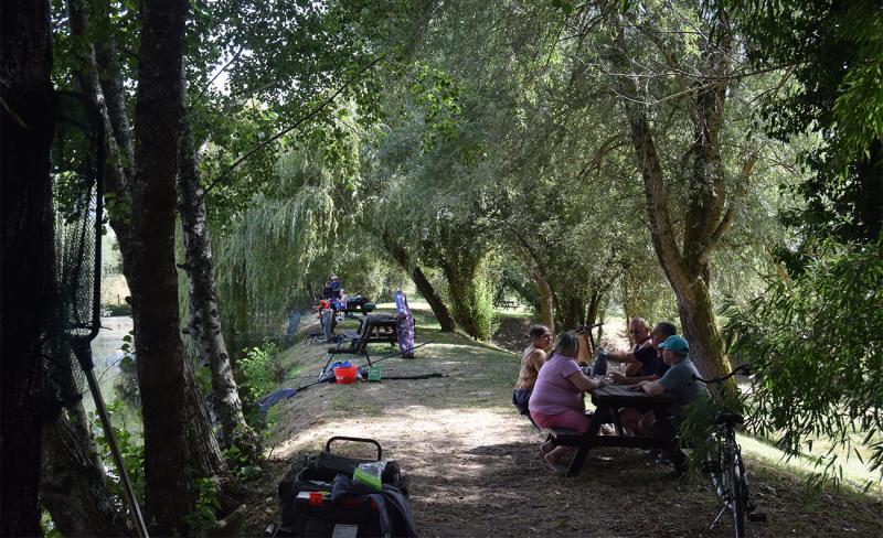 déjeuner au bord de l'étang.JPG