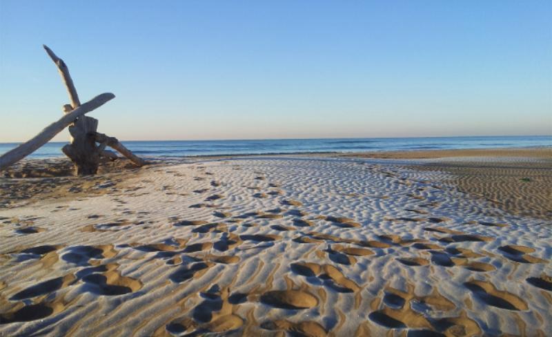des-plages-paradisiaques.jpg